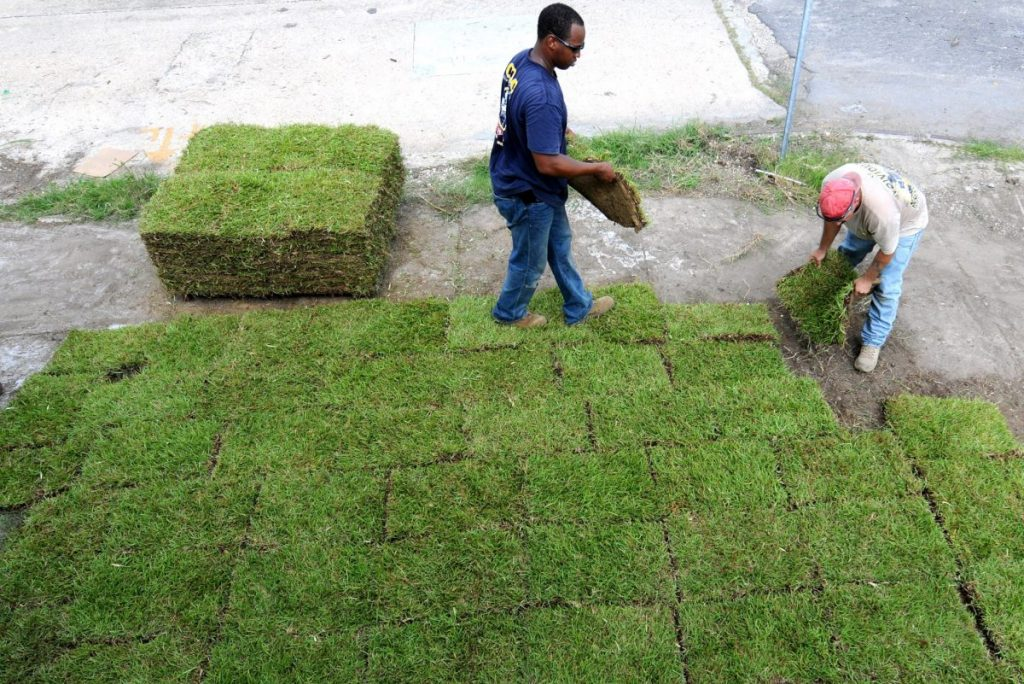 Easy Steps on Laying Sod