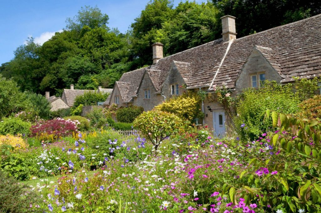 Good Cottage Garden Plants to Plant in Gardens in the US
