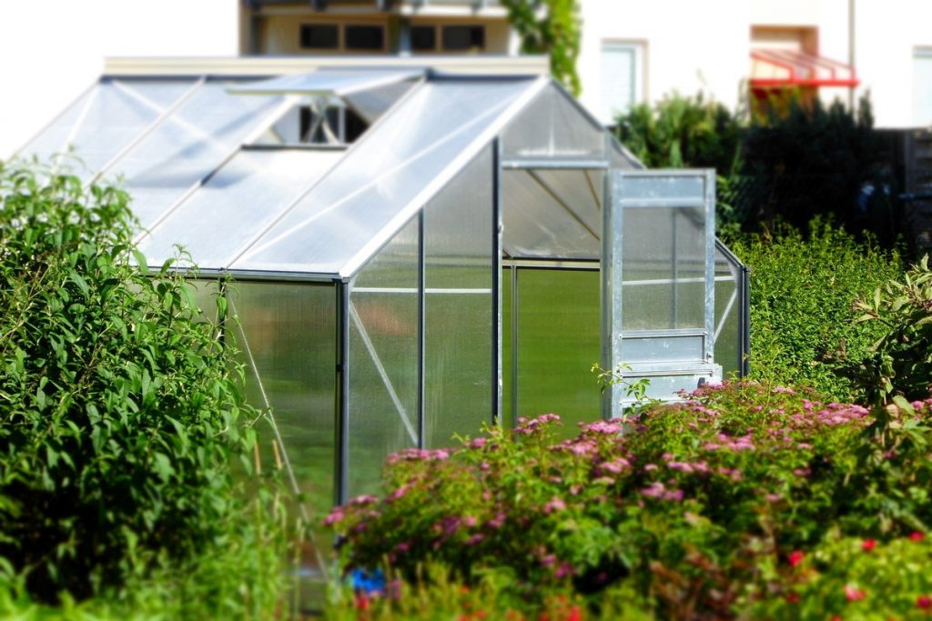 Helpful Tips for DIY Greenhouse Projects
